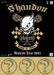 SHANDON: The final Show (7 settembre 2012 Osnago – Festa dei Democratici)